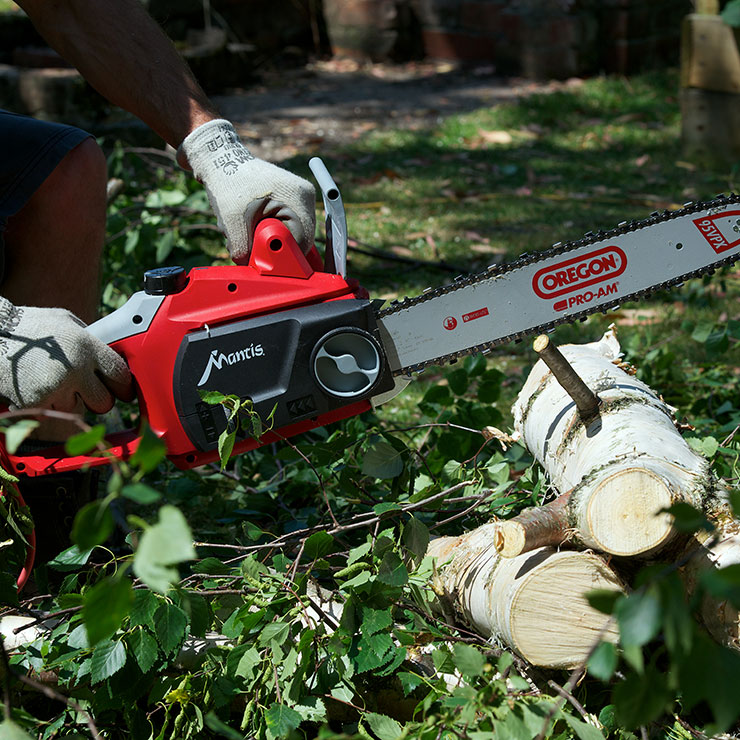 Mantis Electric Chainsaw