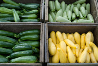 Give away surplus zucchini