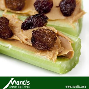 healthy snack ants on a log