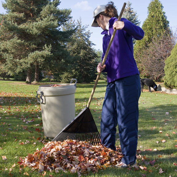Garden and Yard Care Tips For Fall