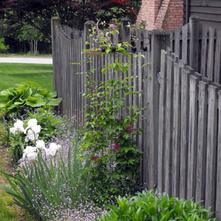 Adjustable Garden Trellis on fence CTTLS-01