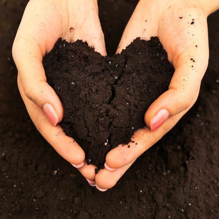 Why We Love Compost