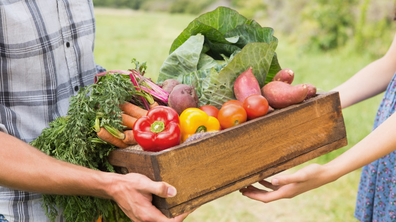 Ideas for Sharing Your Surplus Vegetables
