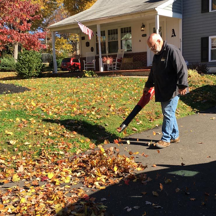 Mantis Cordless Blower In Action