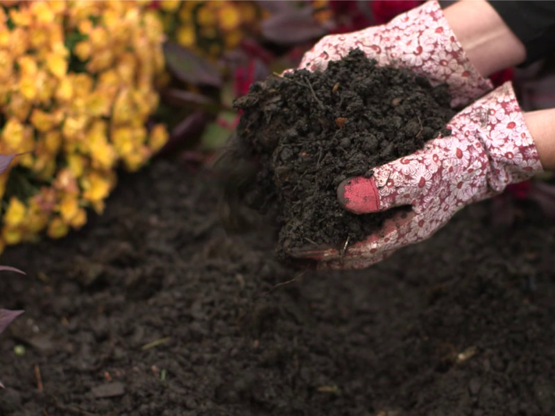 Composting in Winter – The Answers