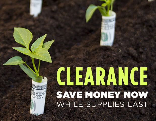 Clearance Save Money While Supplies Last