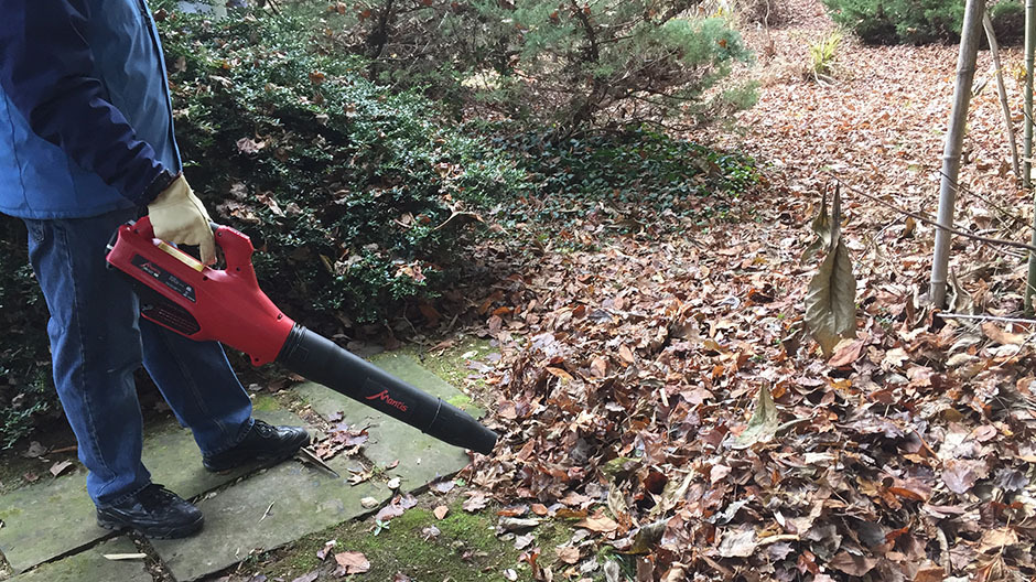 Blowing leaves from path Mantis Cordless Blower