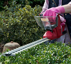 Mantis Hedge Trimmers