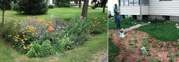 Benefits of a rain garden